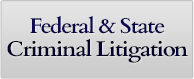 Federal and State Criminal Litigation